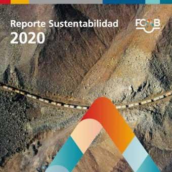 https://www.fcab.cl/reportes/2020/