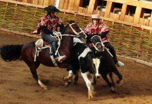 Rodeo   Foto: El Mostrador