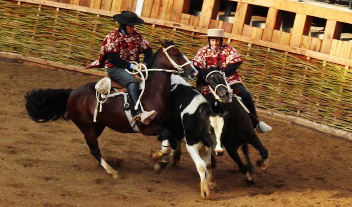 Rodeo | Foto: El Mostrador