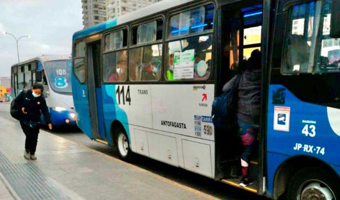 Transantofagasta   Foto: Prensa Seremi de Transportes de Antofagasta
